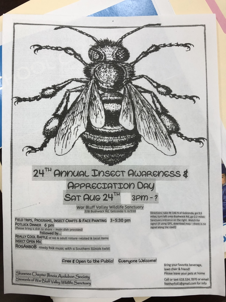 Check out the Insect awareness day !!!!